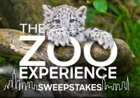 Animal Planet The Zoo Experience Sweepstakes