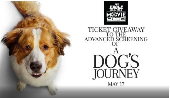 A Dog Journey Home Contest