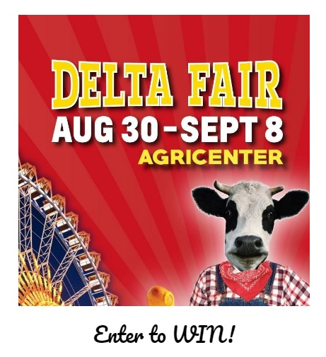 WREG.com The Delta Fair Sweepstakes