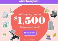 What To Expect Baby Bump Giveaway