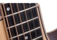 Larrivee Tommy Emmanuel Guitar Giveaway