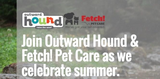 Outward Hound Home Summer Adventure Giveaway