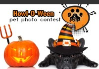 KJ97 Howl-O-Ween Pet Photo Contest
