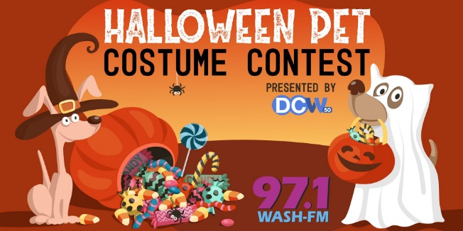 iHeartMedia And Entertainment WASH Halloween Pet Costume Contest