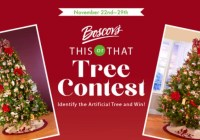 Boscov This Or That Tree Contest