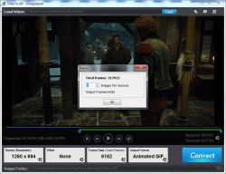 VideoToGif1-250.jpg