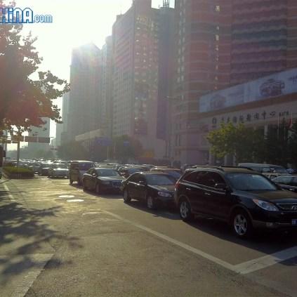 no car day 2011 china