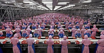 Foxconn va a remplazar trabajadores chinos por robots