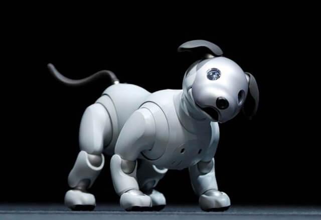 El perro robot de Sony estaría por ser realidad: ¿lo comprarías?