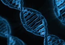 Impresora ADN