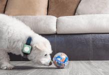 Universall, el primer ecosistema IoT capaz de convertir objetos cotidianos en inteligentes, es presentado por