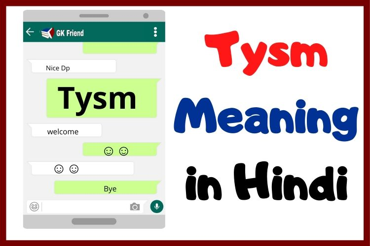 TYSM Meaning in Hindi
