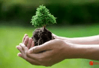 Environment & Ecology- General knowledge Gk in Hindi