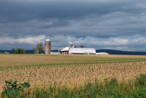 Farm Proposed for Solar Utility