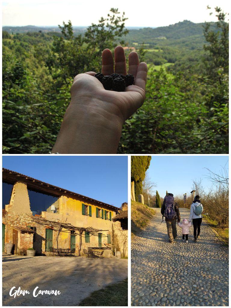 Gite nel Parco del Curone-Montevecchia
