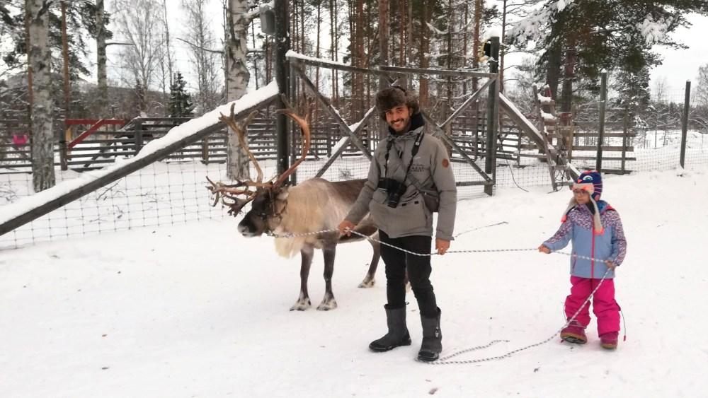 Renne in Lapponia in inverno con bambini