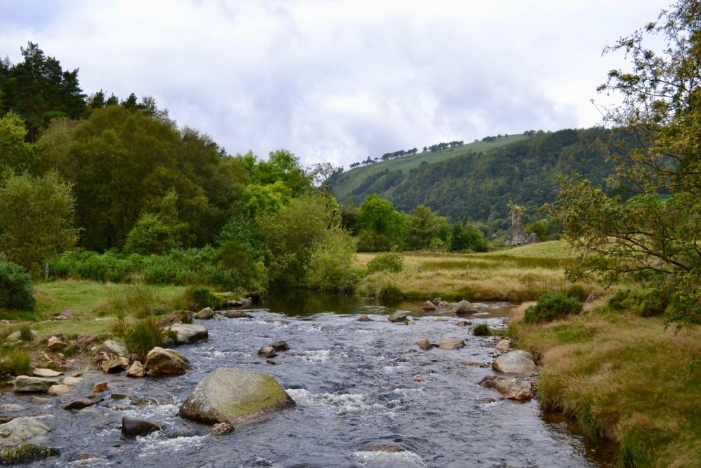 Stream in Wicklow Mountains National Park, Ireland