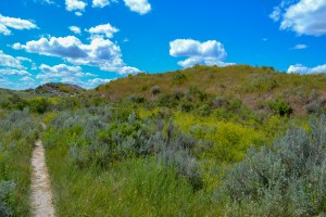 Hiking Trail in Theodore Roosevelt National Park