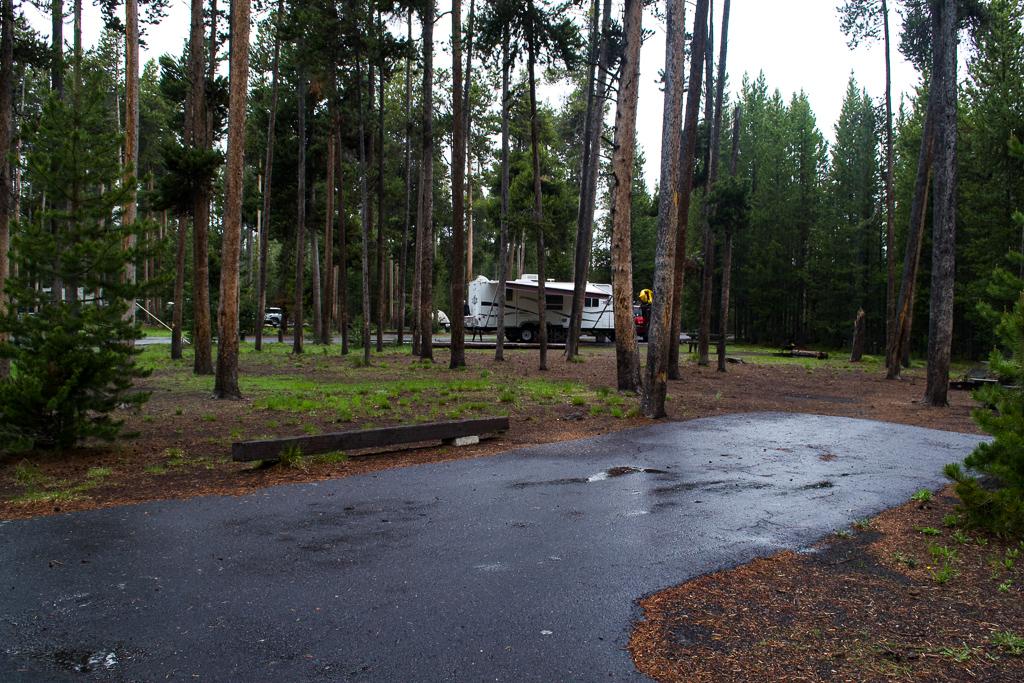 Grant Campground Yellowstone