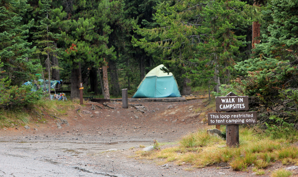 Lewis Lake Campground tent site Yellowstone