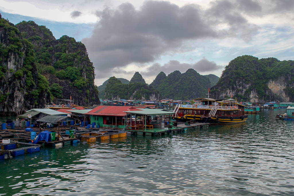 Floating Fishing Villages in Halong Bay, Cat Ba Ventures Day Tour