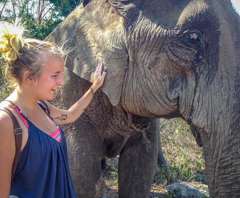 Visit an ethical elephant sanctuary where you can get close to these amazing creatures in Thailand