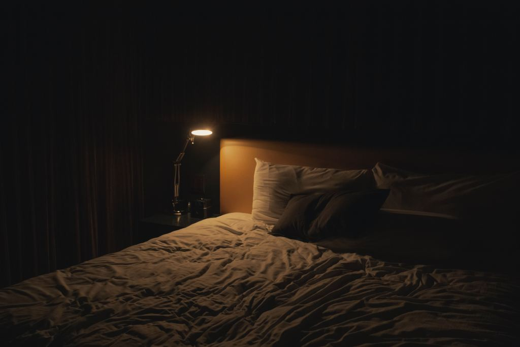 check beds for bed bugs by shining a light on them in the dark