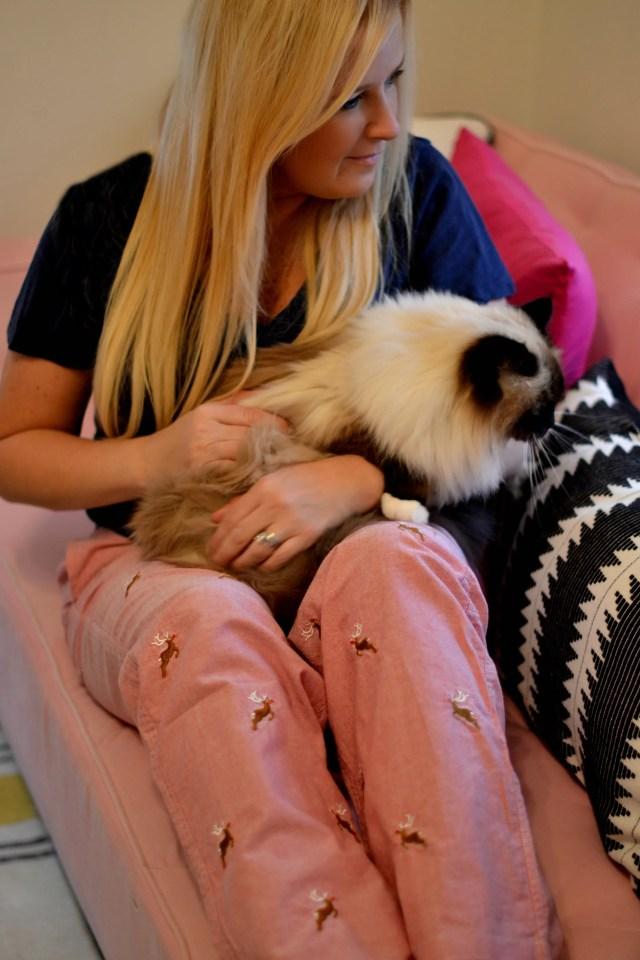 All Pajamas Should Be This Cozy, Chic & Comfortable!   GlamKaren.com