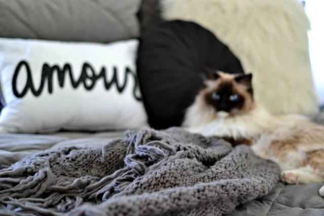 Never slept Better After Sleeping on the Perfect Mattress! | GlamKaren.com
