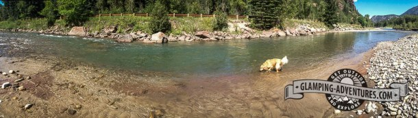 Daisy enjoying the Crystal River. Redstone Campground, Carbondale, CO