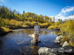 Best fly fishing buddy ever! East Brush Creek, Sylvan Lake S.P.