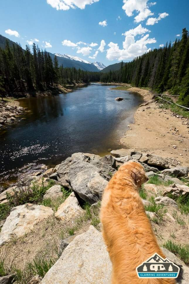 Daisy is ready to go! CO River near Arapaho Bay, CO.