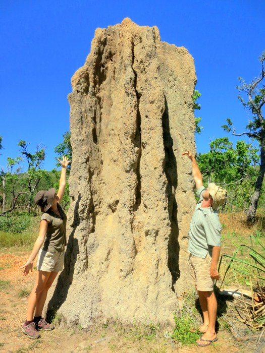 5 Cathedral Termite Mound-HoneyTrek.com