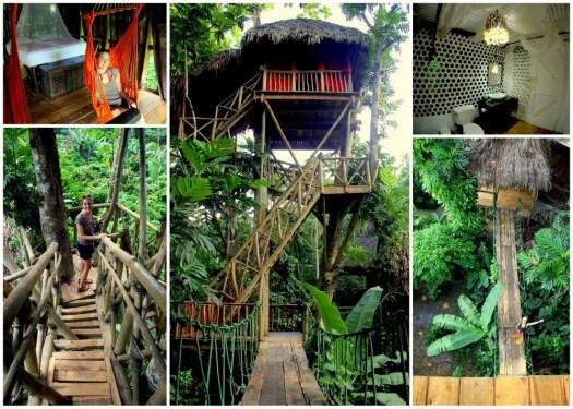 05 DTHV Treehouse Cabin_HoneyTrek.com