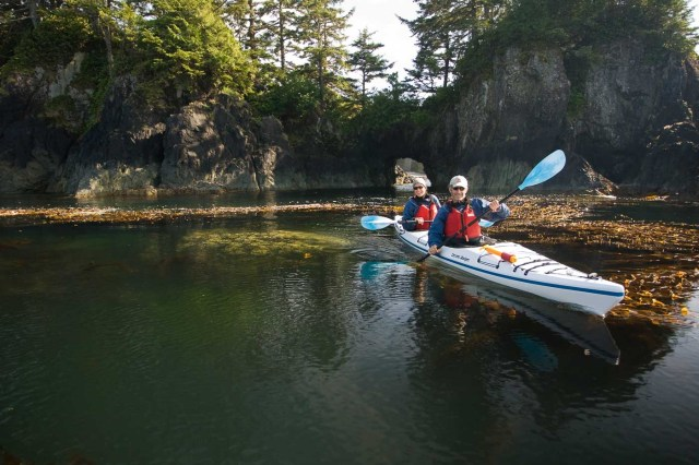 Glamping with West Coast Expeditions Kayakers paddling on the outside of Spring Island are treated with crystal clear waters and rich kelp beds teaming with life in the Kyuquot Sound area.  Kyuquot Sound, Northern Vancouver Island, British Columbia, Canada.