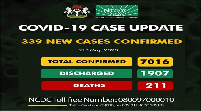 339 New Cases