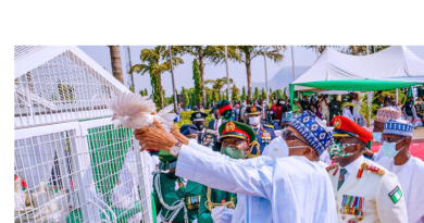 Pigeons Released By Buhari
