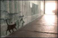 Head for the exit. (Sous un viaduc, Montréal, juillet 2004.)