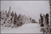 About time. (Massif du Sud, Québec, décembre 2008)