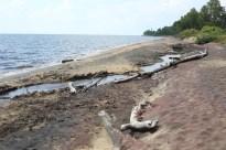 Pause au bord du lac, après ma piqure de guêpe