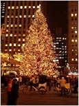 Photo: New York City Christmas Tree.