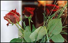Photo: Red roses at christmas.