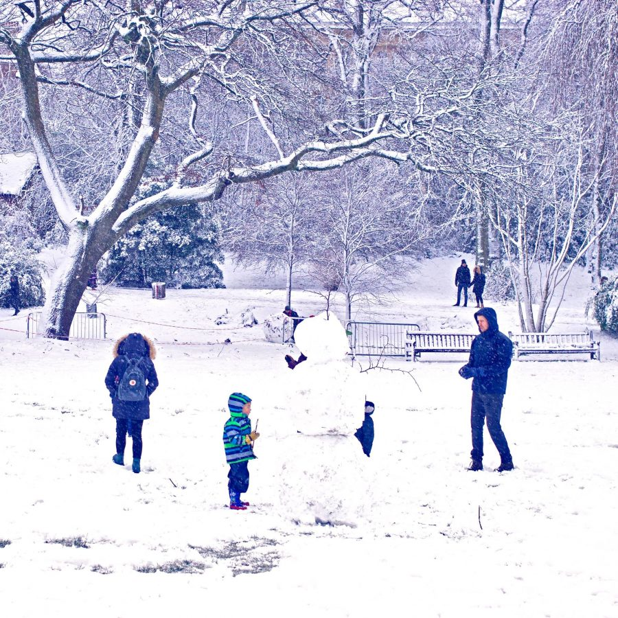 Building a snow man in the Botanic Gardens