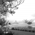 <h5>Botanic Gardens</h5>