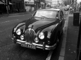 <h5>Jaguar car, Gibson St</h5>