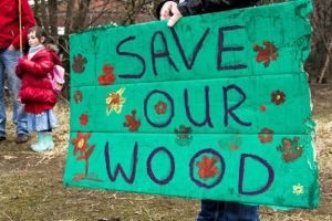 save our wood
