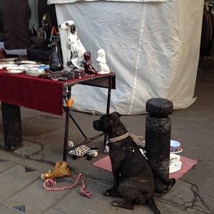 Dog and bone china