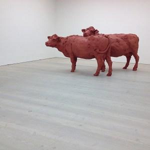 Satchi Gallery Cows