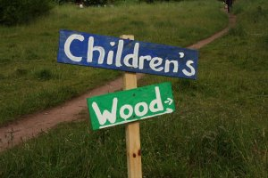 children's wood