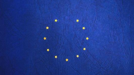 europe now film festival